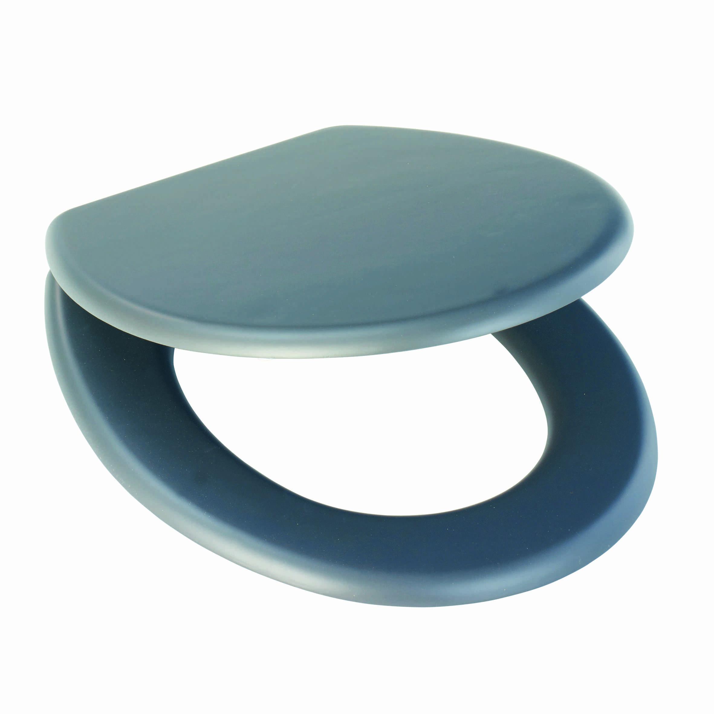 wc sitz mit lena anthrazit acrylbeschichtung toilettensitz 44 x 36 x 5 5 cm neu ebay. Black Bedroom Furniture Sets. Home Design Ideas