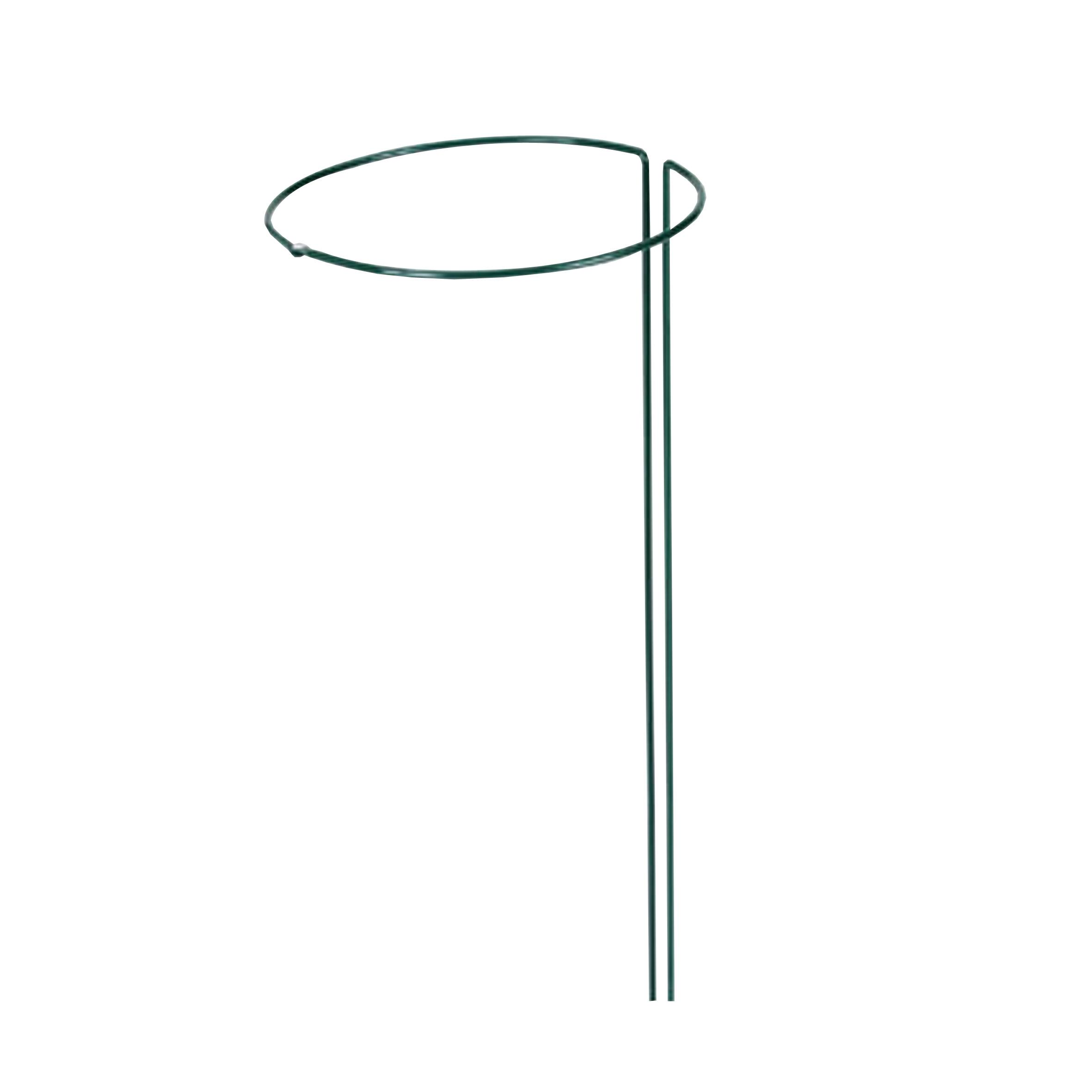 5 Stück Pflanzenstütze grün Pflanzstütze kunststoffbeschichtet Ø 30 x 100 cm neu